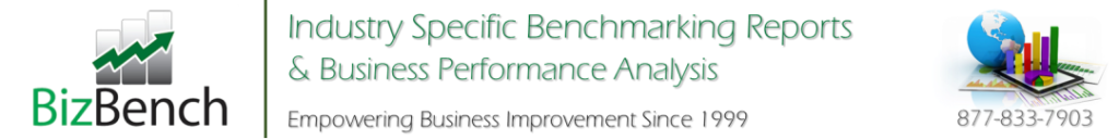 BizBench Banner Industry Performance 1999 1082
