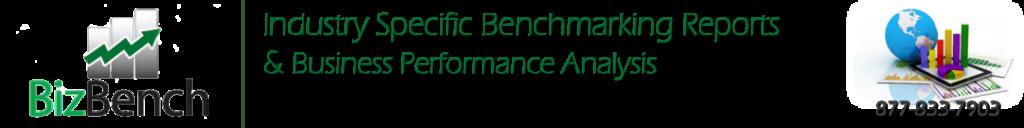 BizBench Banner Industry Performance 1999 1082