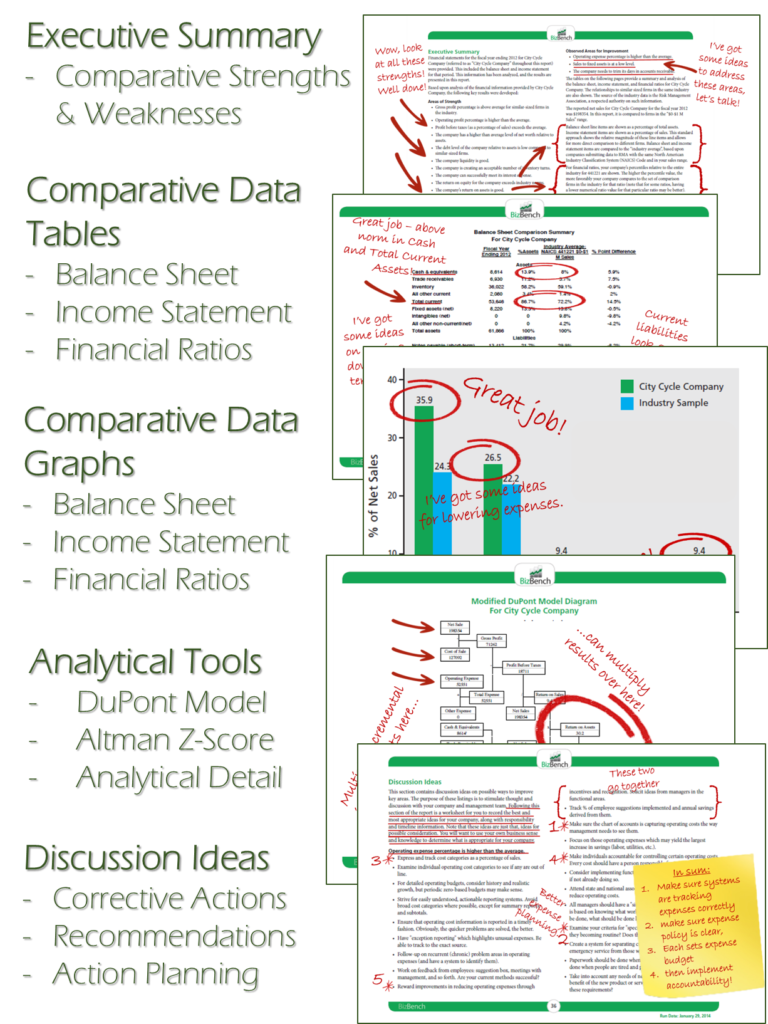 BizBench Report Content Graphic